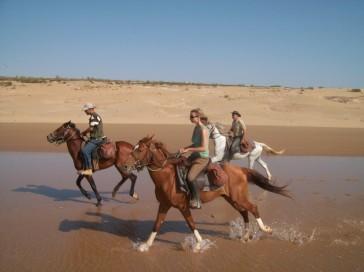 Essaouira-horse-riding
