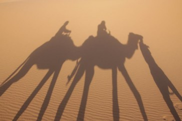 viajes rutas tours marruecos rutas  (113)