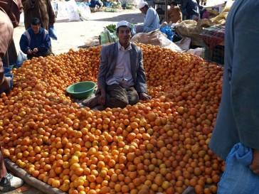 viajes rutas tours marruecos rutas  (47)