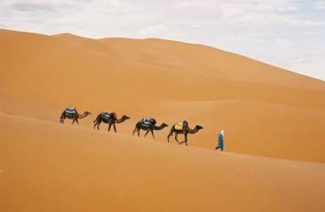 viajes rutas tours marruecos rutas  (66)